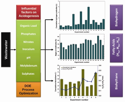 Deciphering acidogenic process towards biohydrogen, biohythane, and short chain fatty acids production: multi-output optimization strategy