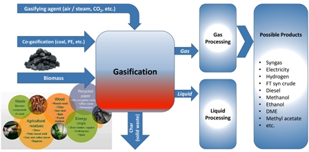 A critical review on biomass gasification, co-gasification, and their environmental assessments